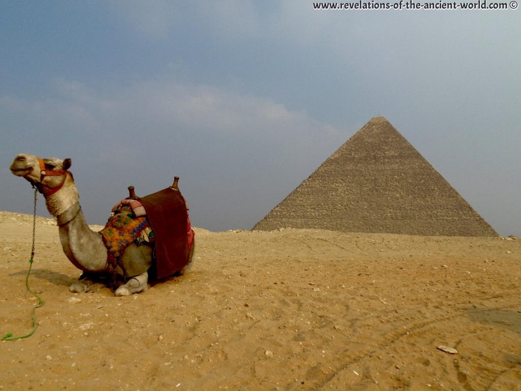 Camel + Kephren