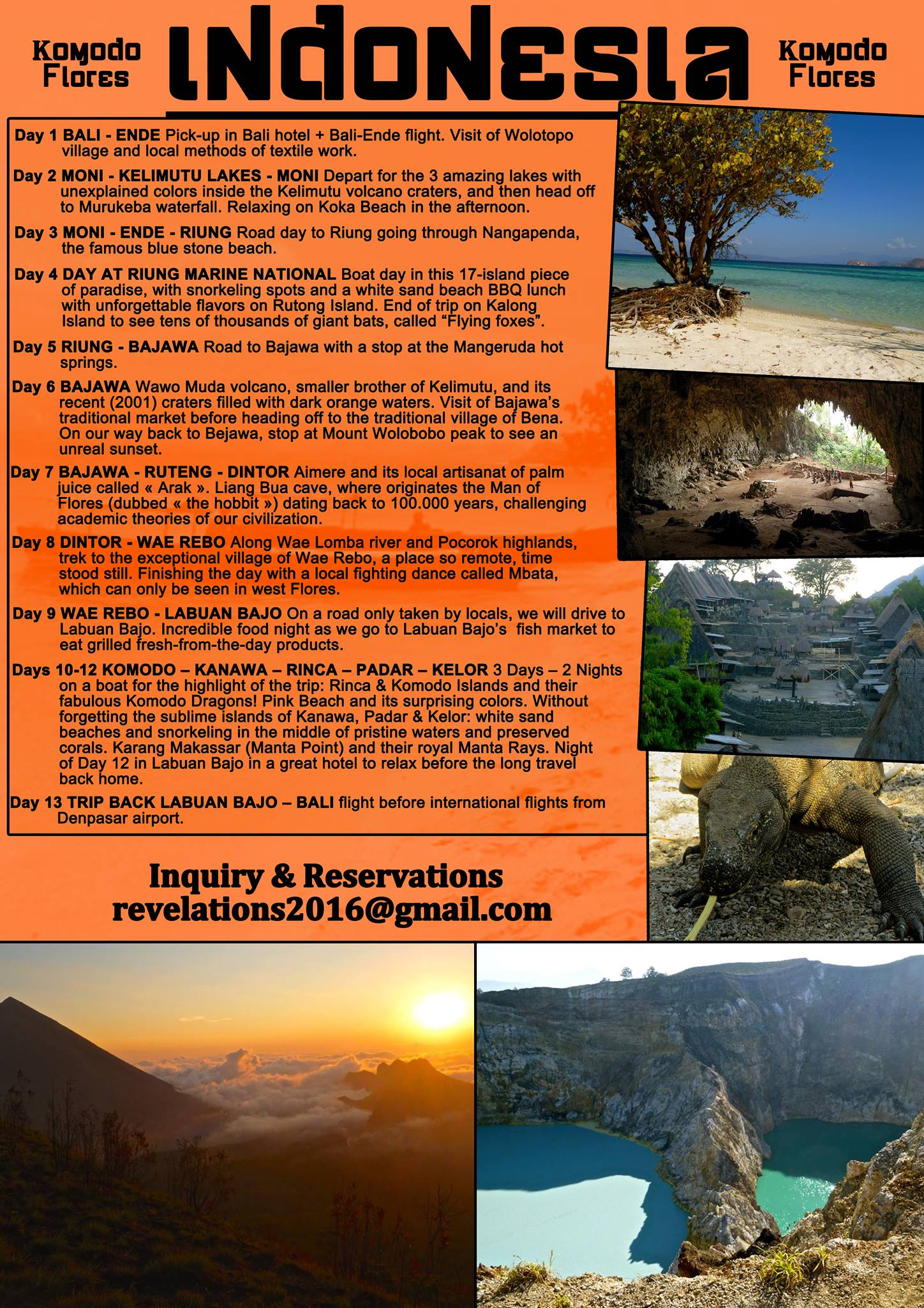 Dare the exclusive experience of meeting the Almighty Komodo Dragons