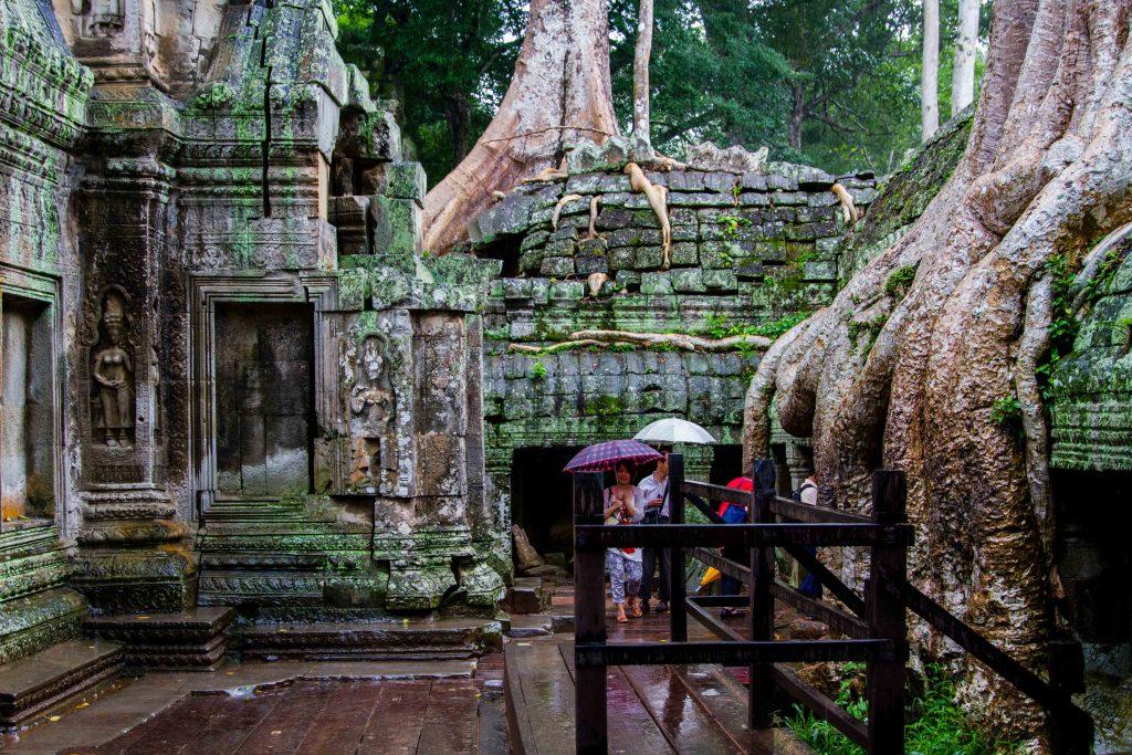 Trees-at-Ta-Prohm-Angkor-Thom-Angkor-Wat-Cambodia-1024x683